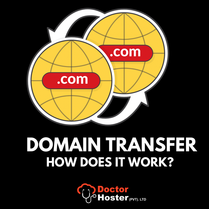 domain transfers, domain registration